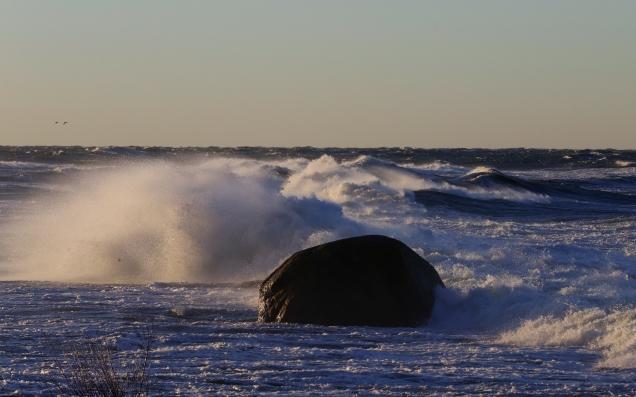 Vågor sten