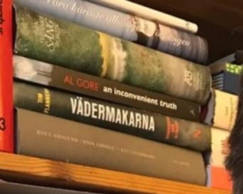 Per Holmberg böcker